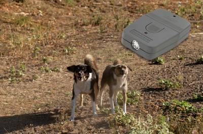 Παρουσίαση και δοκιμή της απωθητικής συσκευής σκύλων Ultrasonic Dogchaser!
